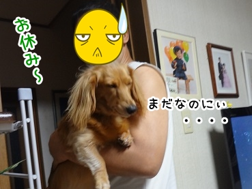 kinako887.jpg