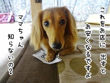 kinako898.jpg