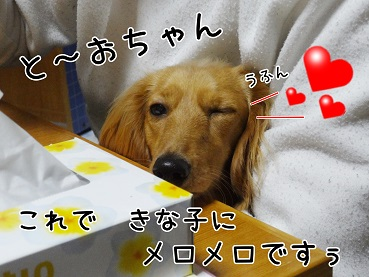 kinako92.jpg