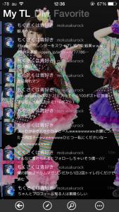 syachi_image1