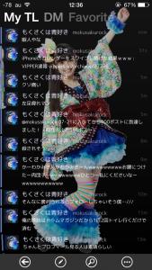 syachi_image4