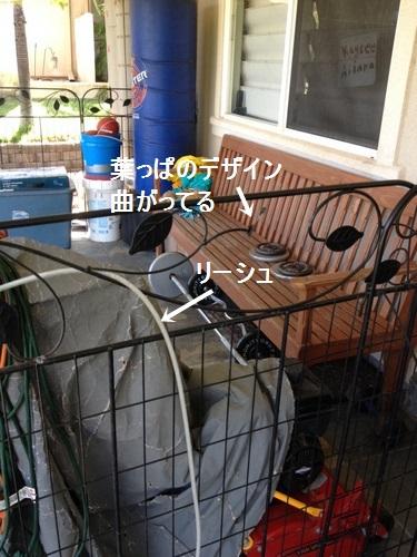 hoku140805amoji.jpg
