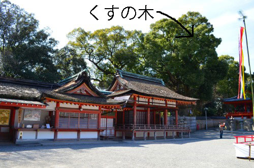 _石清水八幡宮DSC_5295