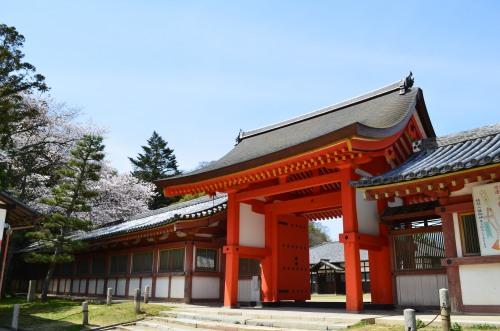_石清水八幡宮DSC_5207
