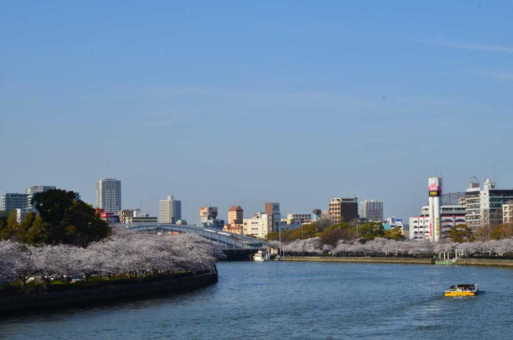 _毛馬桜之宮公園DSC_5390