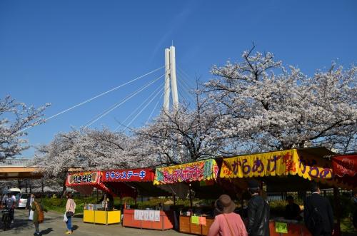 _毛馬桜之宮公園DSC_5361