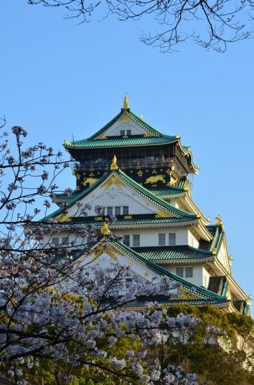 _大阪城桜DSC_5483