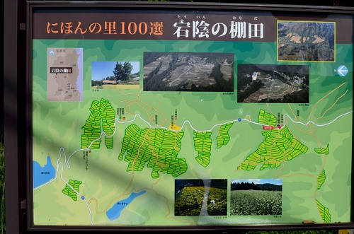 _棚田DSC_7804