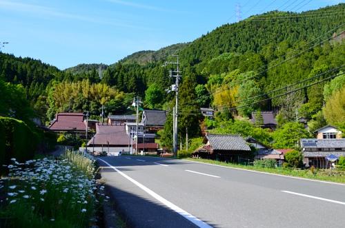 _棚田DSC_7855