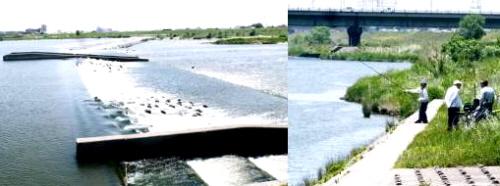 河川5-3-1