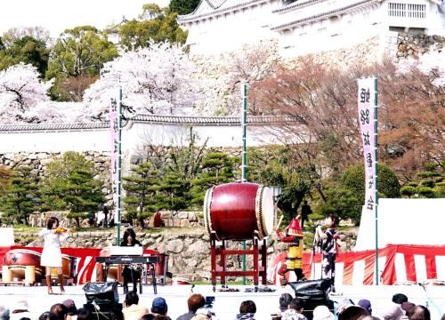 hanami46-6.jpg