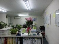 オフィスが明るい♪
