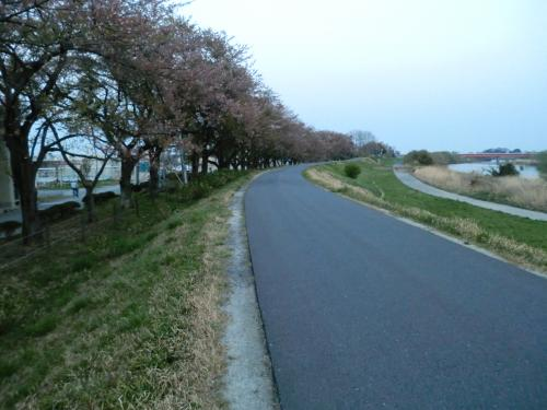 【2014.4.15】通勤・2
