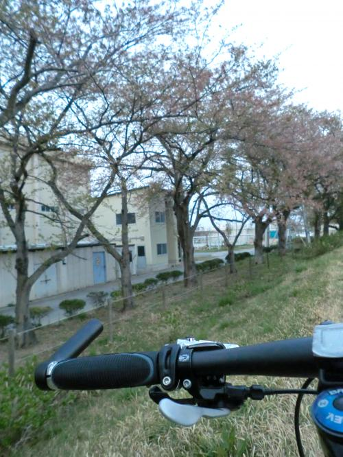 【2014.4.15】通勤・1
