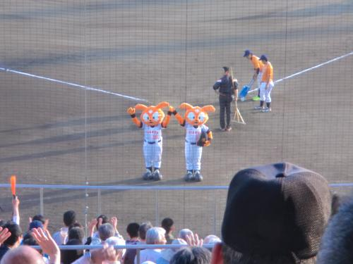 2014いわきプロ野球・10