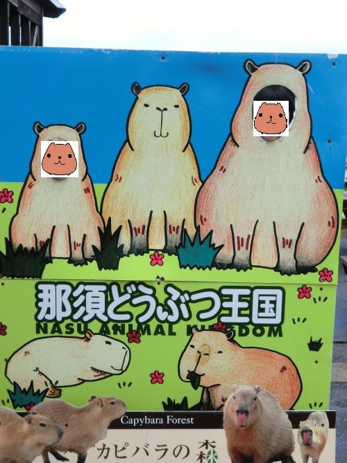 2014:那須動物王国・4