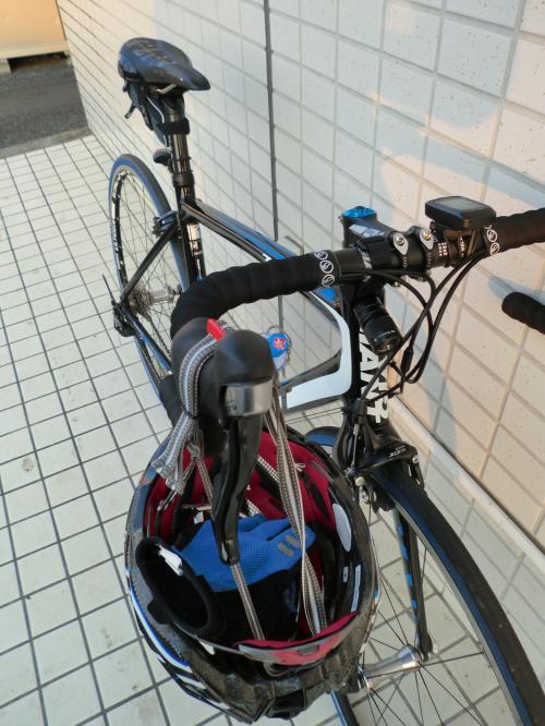 TCR1とソイジョイ・1