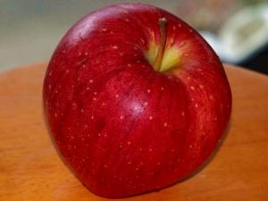 りんご20140315