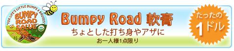 Sierra BeesのBumpy Road Salve