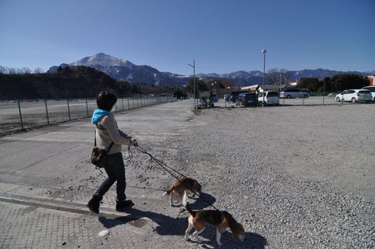 000武甲山バック散歩