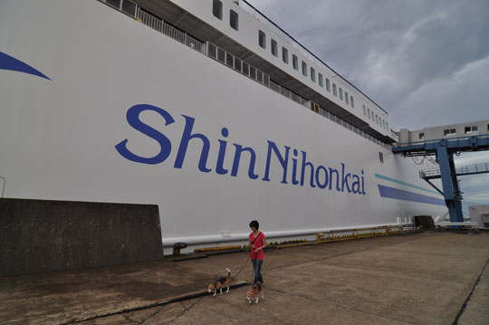 000台風の中北海道へ