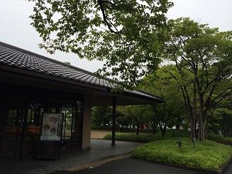 20140802miwa2.jpg