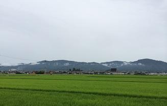 20140802miwa5.jpg