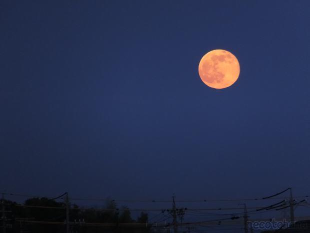 DSCF5739満月