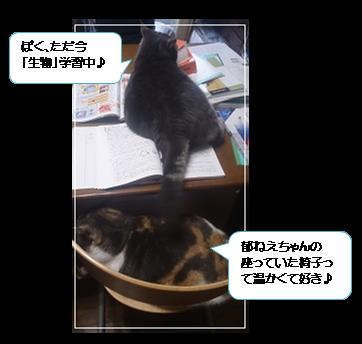 勉強中バロン