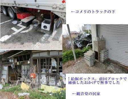 hokakuki_201405022059349af.jpg