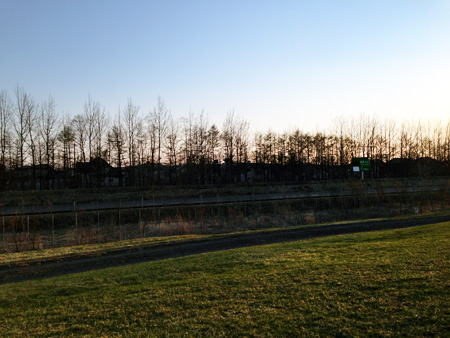 運動公園付近に高速道路