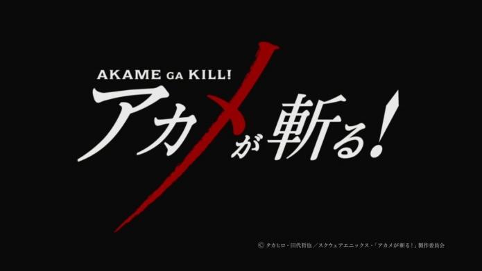TVアニメ『アカメが斬る!』ティザーPV.720p.mp4_000013179