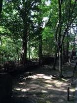 京都20142