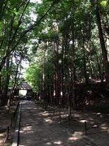 京都20143