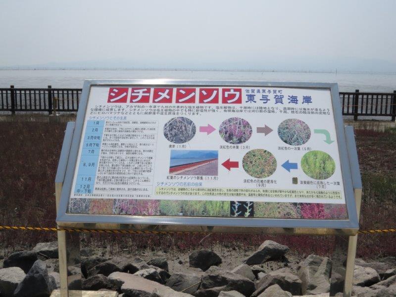 IMG_1033東与賀海岸