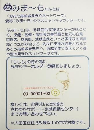 P26082218220001 (1) (325x448)