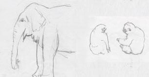 動物クロッキー1