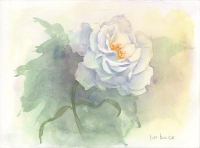薔薇ミスティパープル