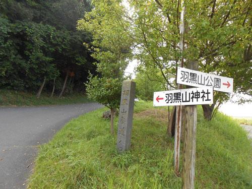 20140811_2.jpg