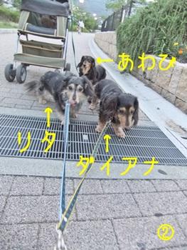 1407_03.jpg