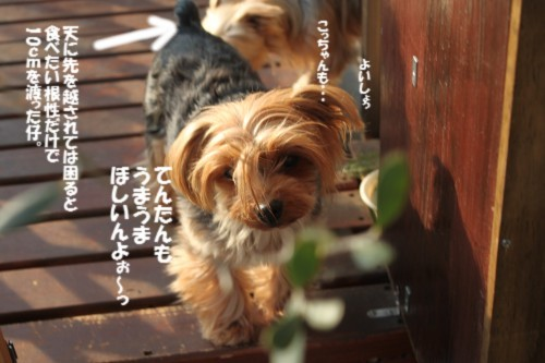 IMG_4280.jpg