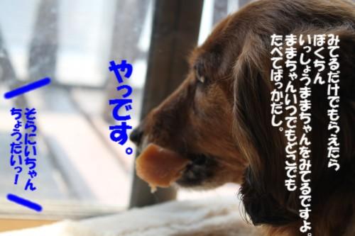 IMG_4769_201404111252052cb.jpg