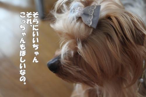 IMG_5290_20140504131142c53.jpg