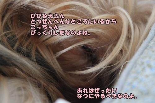 IMG_5974_20140531111604712.jpg