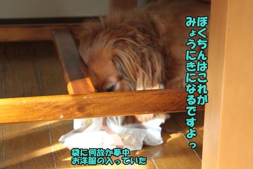 IMG_6984_20140715124123488.jpg