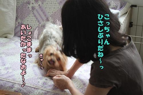 IMG_7196.jpg