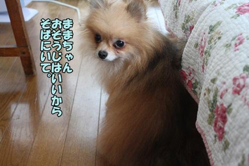 IMG_7246_20140725102629b69.jpg