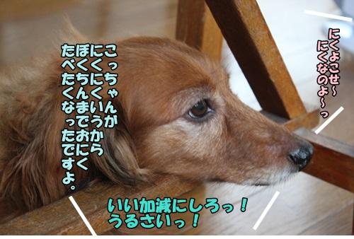 IMG_7248_20140725102156d94.jpg