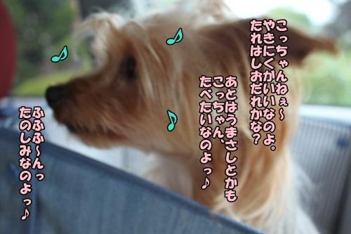 IMG_7271_2014072621513450c.jpg