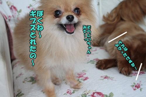 IMG_7576.jpg